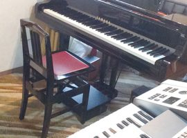 個性を伸ばしながら音楽に親しむ喜びを育みますかばしま音楽教室