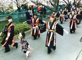 よさこい踊りを一緒に踊りましょう!鳴子踊りチーム輝楽(きら)