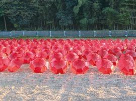 2017/11/11(土)・19(日)黒川里山アートプロジェクト「里山アート散策ツアー」