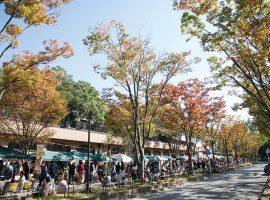 2018/11/3(祝)・4(日)Vege&Fork Market Vol.17