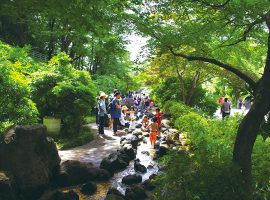 涼を求める人々で大賑わいの「せせらぎの水遊び」(10月までオープン)