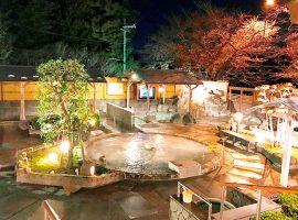 「よみうりランド 丘の湯」露天風呂で名月を愉しむ