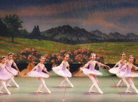 バレエで育む美しい躰と豊かな心「バレエスタジオ えるどえる」