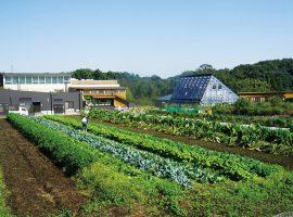 2018/11/10(土)第7回 明治大学黒川農場収穫祭