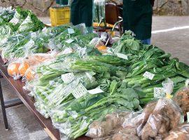 (2019年3月21日に開催された早野野菜マーケットの様子)