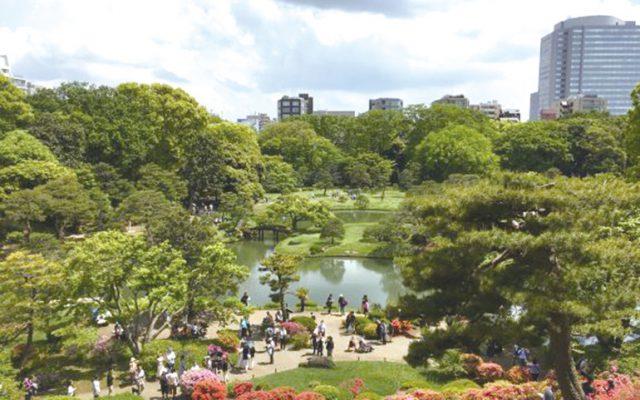 園内で最も高い藤代峠からの眺め