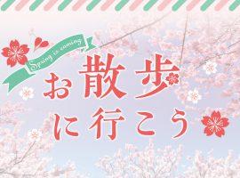 Spring is coming !お散歩に行こう