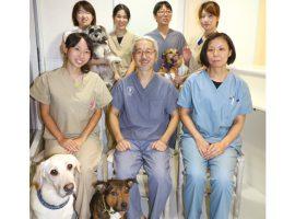 ペットとの良い関係が長く続くように麻生獣医科医院