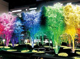 四季の彩からインスピレーションを得てデザインされた植栽の装飾「story」(イメージ)