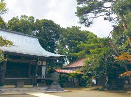 祇園寺本堂と板垣退助が植えたと伝わる松(写真右)