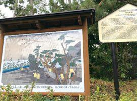 旧東海道松並木にある広重筆「大磯宿」の説明版