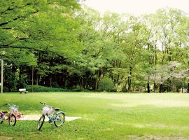 住宅街の真ん中にある王禅寺公園。子どもたちが遊具で遊んだり、芝生のきれいな季節にはピクニックをしたり。公園内にある緑豊かな遊歩道を歩くと、住宅街の中とは思えない景色を楽しめる