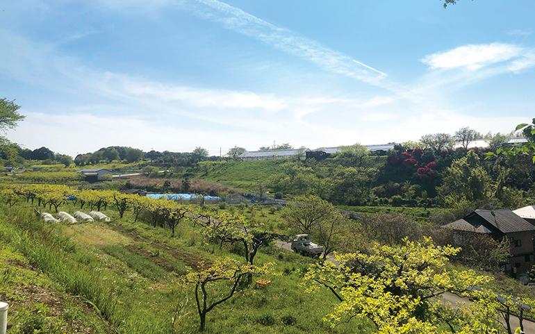 岡上の田園風景