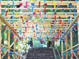 秋の彩りへ 新感覚フラワーパーク「HANA・BIYORI」季節を奏でる風の音色 花風鈴 2021/9/26(日)まで